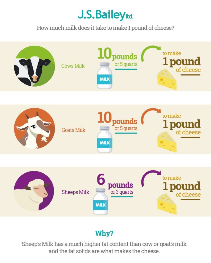 One pound of cheese infographic