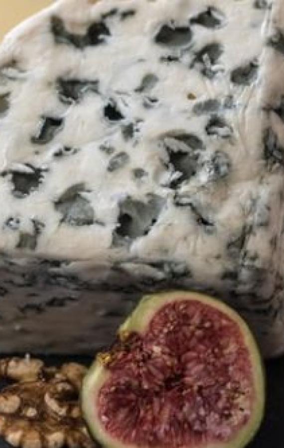Cheese Connoisseur Quiz