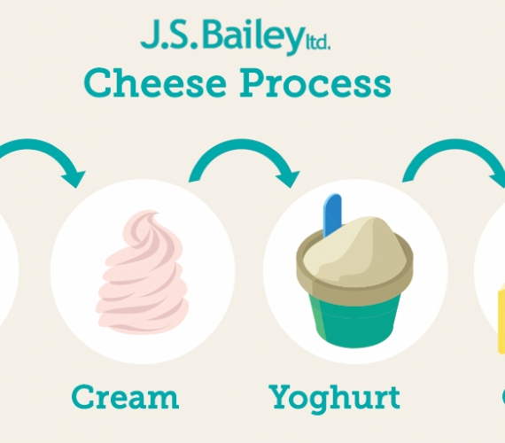 How Does Milk Become Cheese, Butter, Cream or Yoghurt?