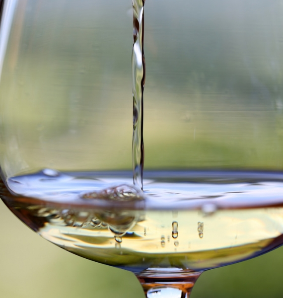 Which cheeses to enjoy with white wines