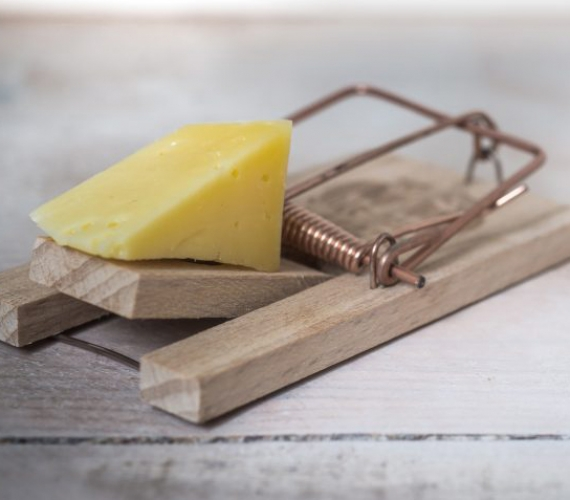 The top four cheese myths