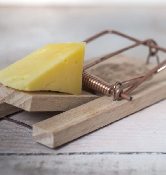 The top four cheese myths