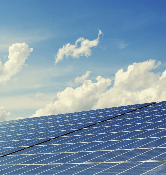 Could the future of cheesemaking be in solar power?